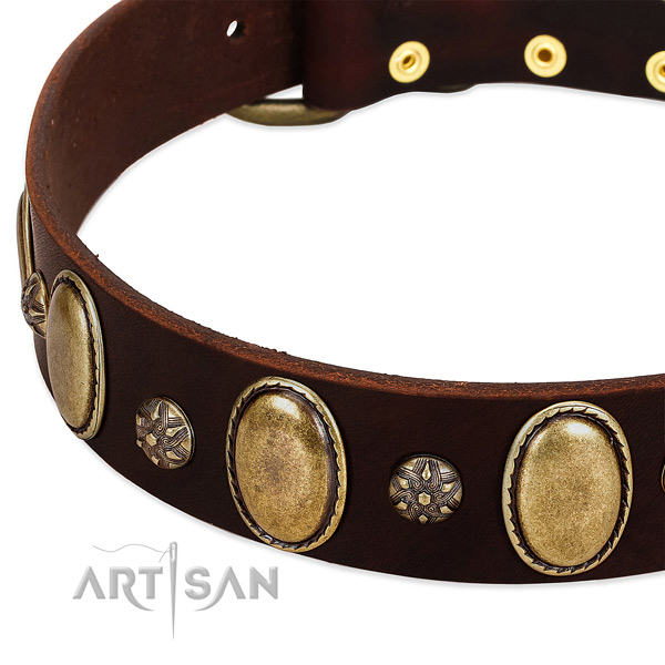Everyday walking soft full grain leather dog collar