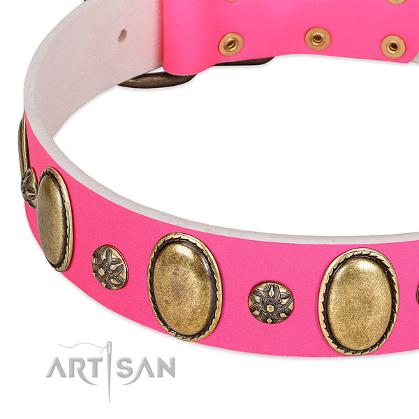 Fancy walking flexible full grain natural leather dog collar with embellishments