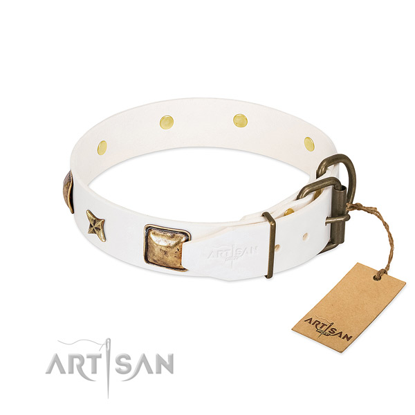 Full grain genuine leather dog collar with corrosion proof fittings and decorations