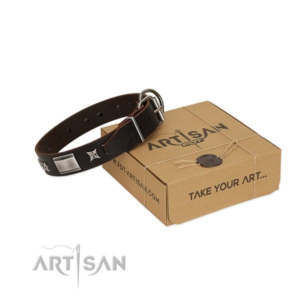 Top notch collar of leather for your beautiful doggie