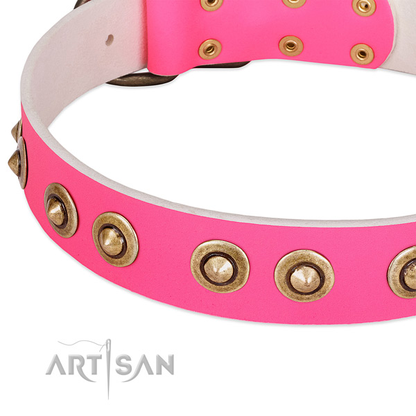 Rust-proof adornments on natural genuine leather dog collar for your doggie