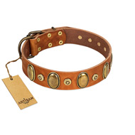 """Crystal Sand"" FDT Artisan Tan Leather Rottweiler Collar with Vintage Looking Oval and Round Studs"