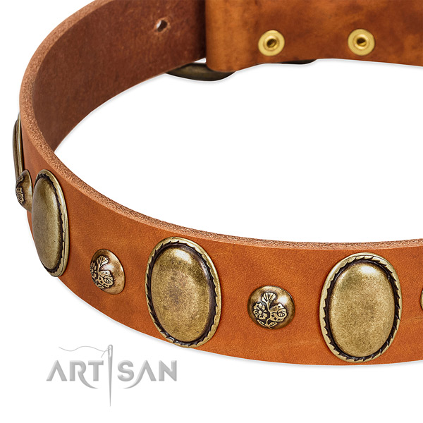 Full grain genuine leather dog collar with incredible embellishments