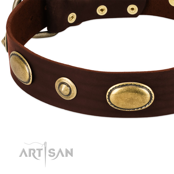 Corrosion resistant studs on full grain leather dog collar for your doggie