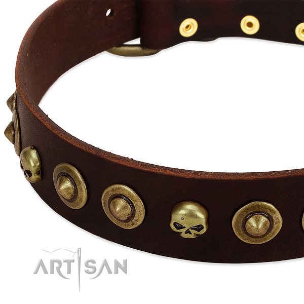 Impressive decorations on leather collar for your canine