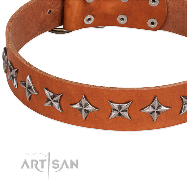 Easy wearing decorated dog collar of fine quality full grain genuine leather