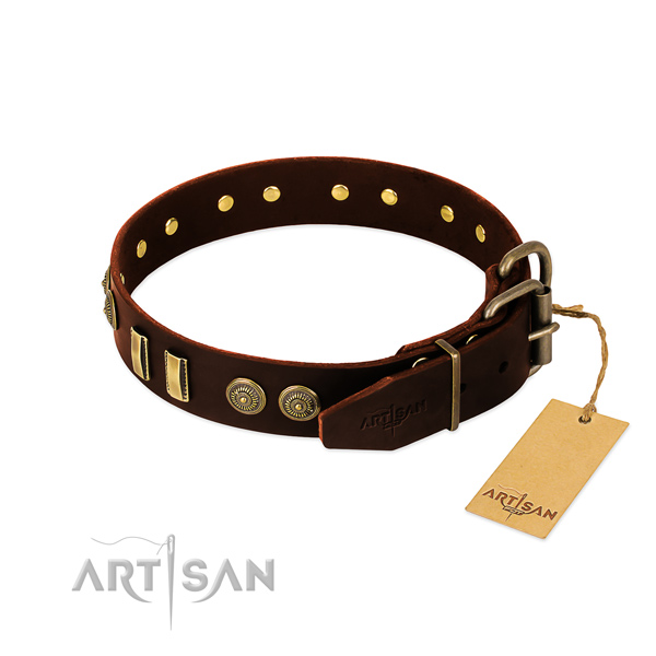 Rust resistant embellishments on natural leather dog collar for your four-legged friend