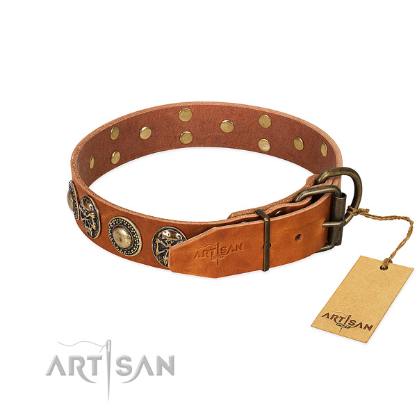 Rust-proof decorations on everyday use dog collar