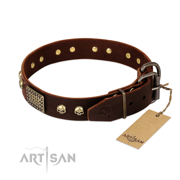 Corrosion proof traditional buckle on daily use dog collar