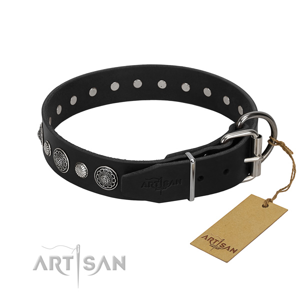 Fine quality full grain leather dog collar with fashionable studs