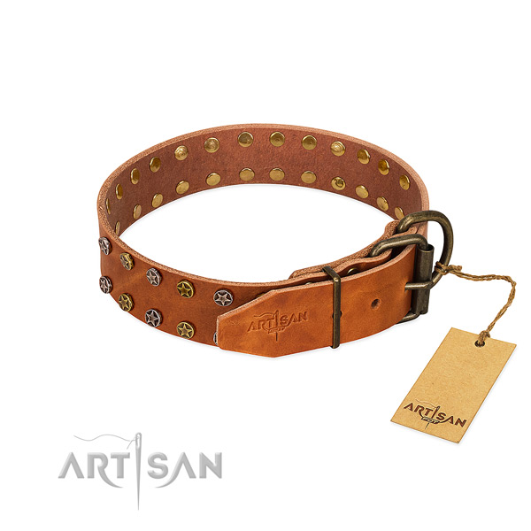 Comfortable wearing full grain genuine leather dog collar with stylish design adornments