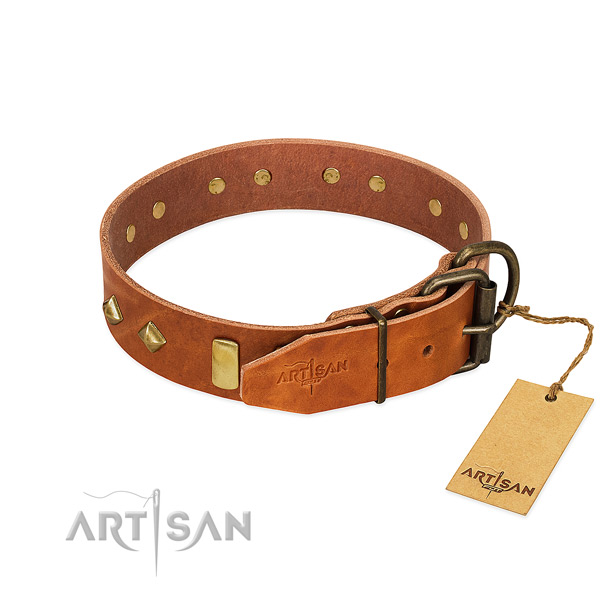 Fancy walking full grain natural leather dog collar with inimitable studs