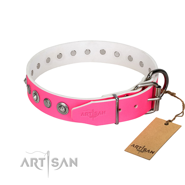 Finest quality full grain genuine leather dog collar with extraordinary adornments