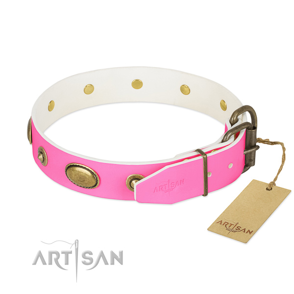 Rust resistant fittings on natural leather dog collar for your dog