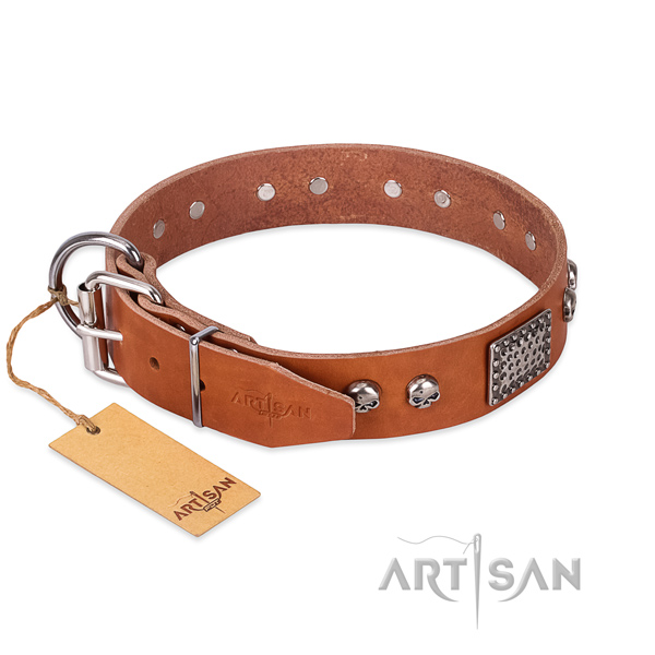 Rust resistant decorations on handy use dog collar
