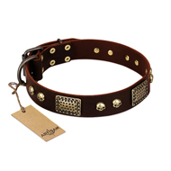 """Magic Amulet"" Brown Leather Rottweiler Collar with Skulls and Plates"