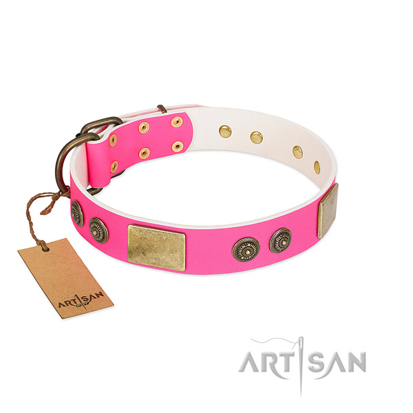 Decorated full grain genuine leather dog collar for daily use