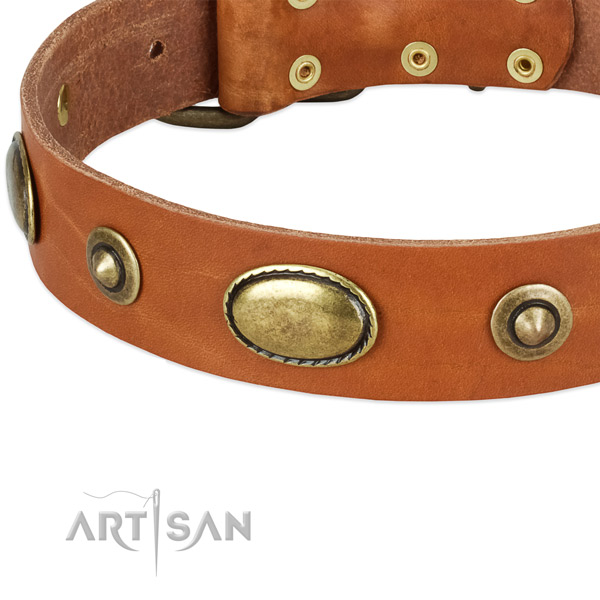 Strong embellishments on full grain natural leather dog collar for your pet