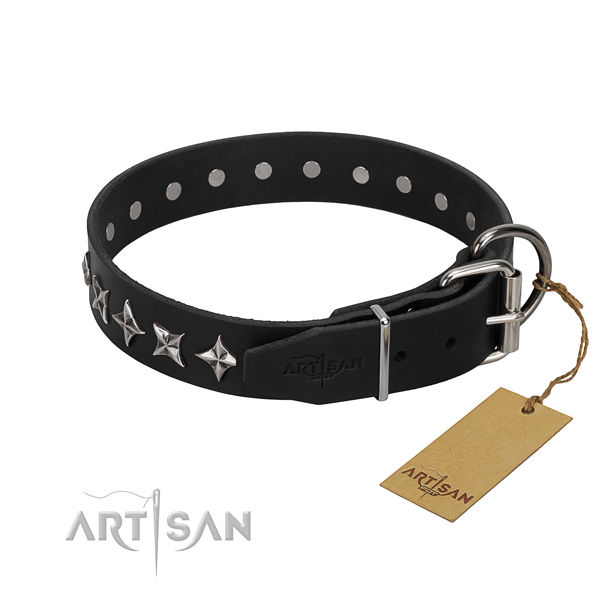 Stylish walking studded dog collar of high quality full grain genuine leather