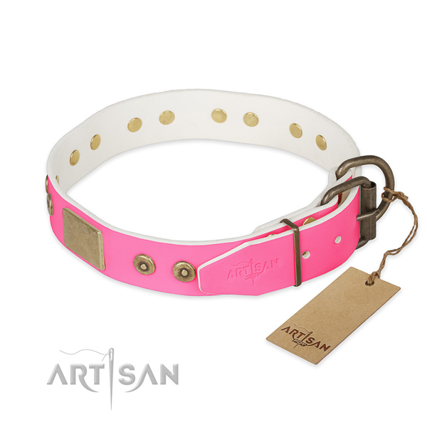 Rust resistant fittings on easy wearing dog collar
