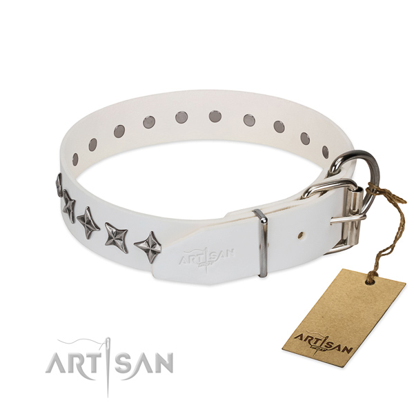 Basic training adorned dog collar of finest quality genuine leather