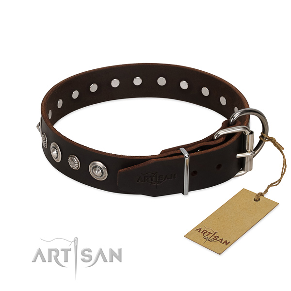 Durable natural leather dog collar with impressive embellishments