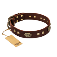 """Old-fashioned Glamor"" FDT Artisan Brown Leather Rottweiler Collar with Old Bronze Look Plates and Circles"