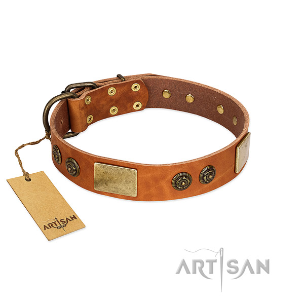 Stylish leather dog collar for comfy wearing