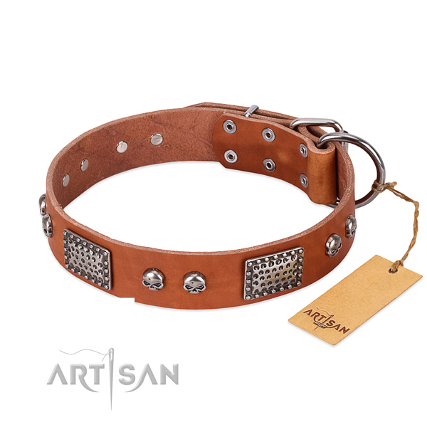 Easy wearing full grain genuine leather dog collar for stylish walking your canine