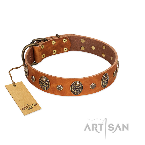 Fashionable full grain leather collar for your four-legged friend