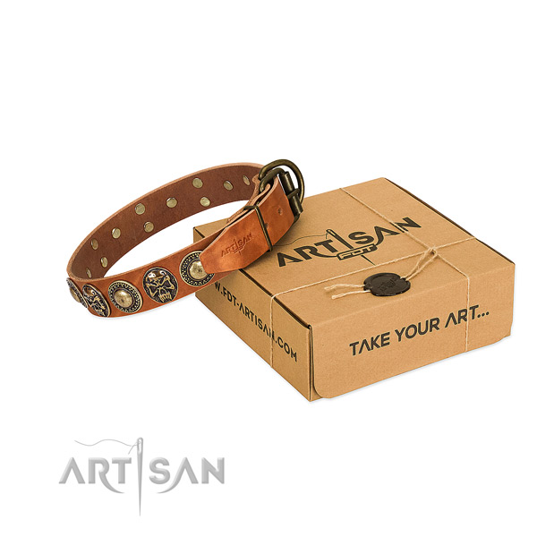 Reliable studs on dog collar for easy wearing