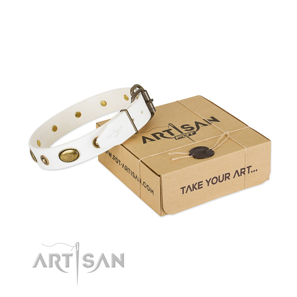 Top quality full grain genuine leather collar for your stylish canine