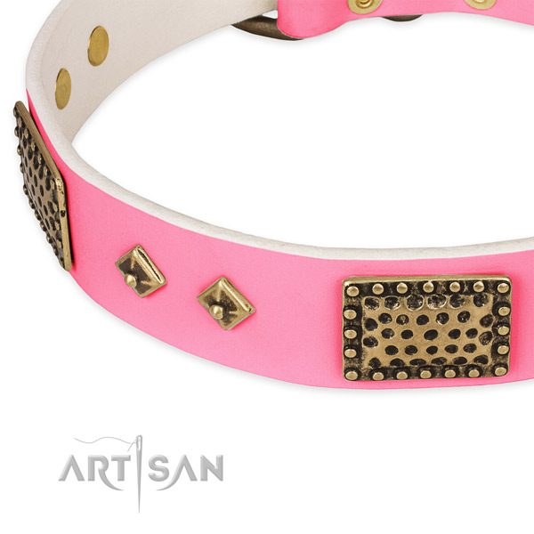 Genuine leather dog collar with adornments for daily walking