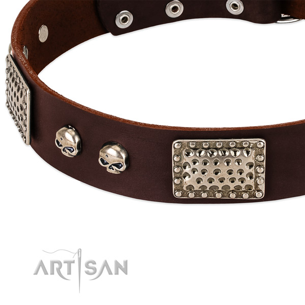 Rust-proof studs on full grain genuine leather dog collar for your dog