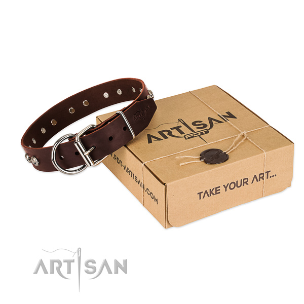 Rust resistant traditional buckle on dog collar for everyday use