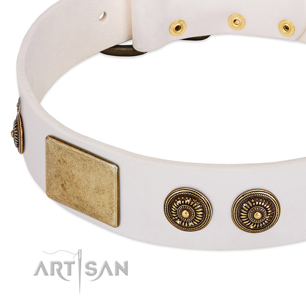Stunning dog collar made for your impressive canine