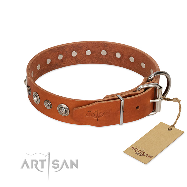 Top notch natural leather dog collar with exceptional embellishments