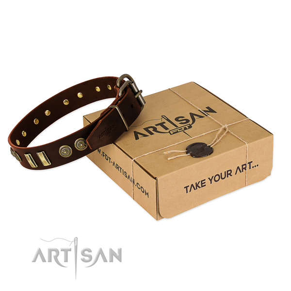Corrosion proof embellishments on natural leather dog collar for your four-legged friend