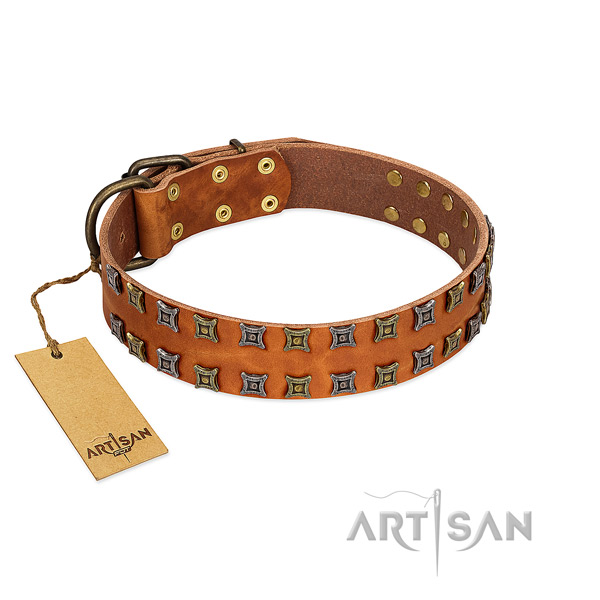 Reliable full grain natural leather dog collar with embellishments for your canine
