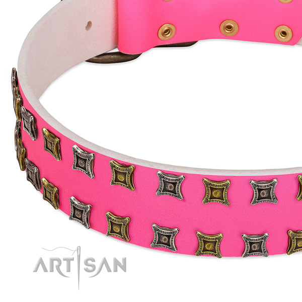 Genuine leather dog collar with studs for your impressive pet