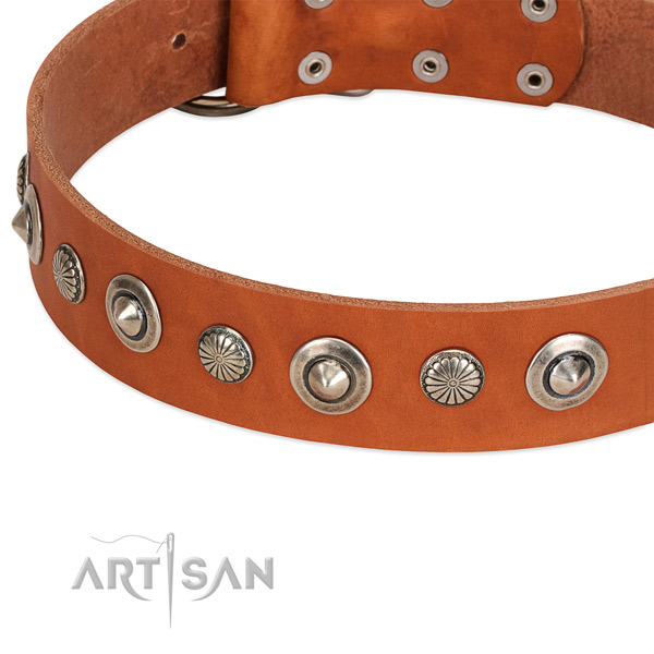 Unusual embellished dog collar of strong full grain genuine leather