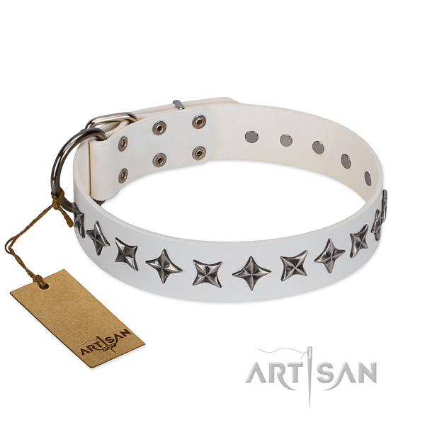 Everyday use dog collar of quality genuine leather with embellishments