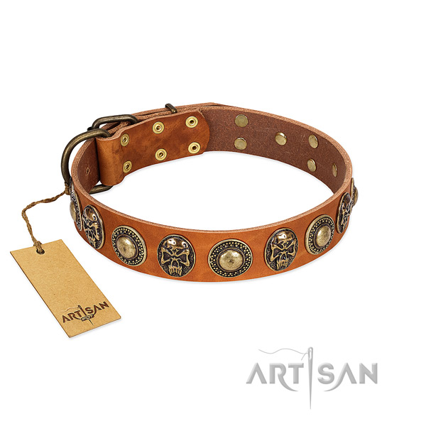 Easy wearing full grain genuine leather dog collar for basic training your pet