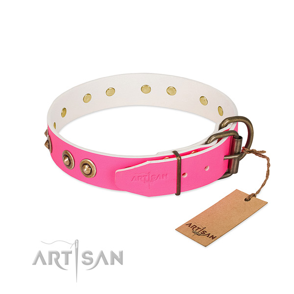Full grain genuine leather dog collar with reliable fittings and adornments