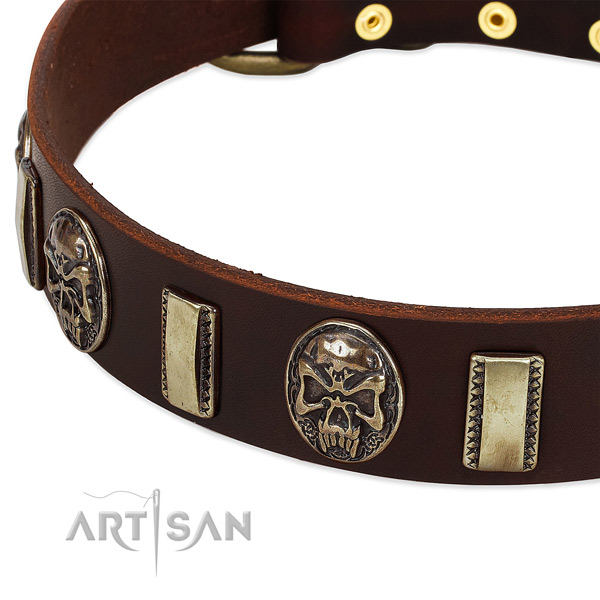 Corrosion proof fittings on natural genuine leather dog collar for your pet