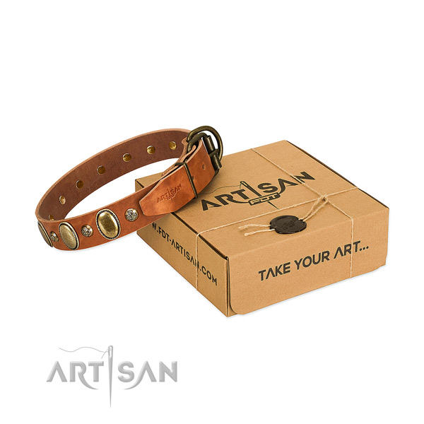 Impressive genuine leather dog collar with rust resistant fittings