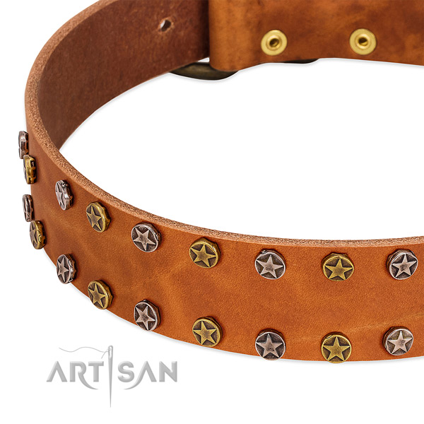 Everyday use natural leather dog collar with exquisite adornments