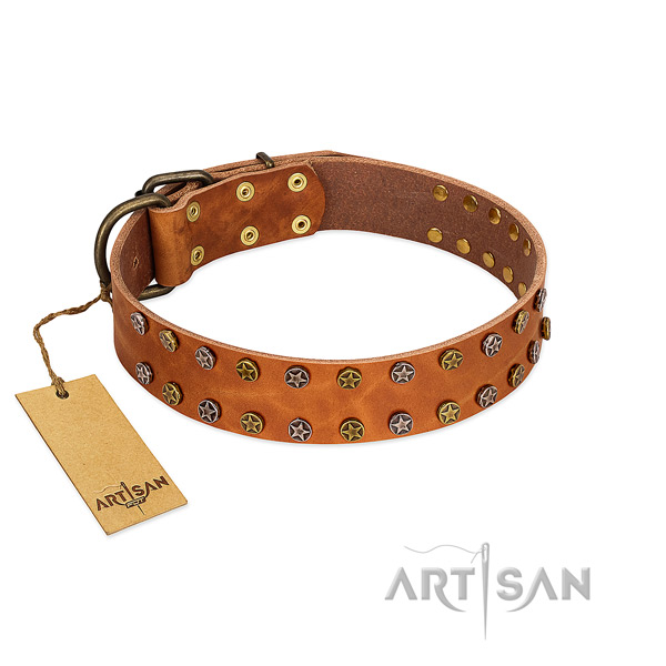 Stylish walking soft full grain genuine leather dog collar with embellishments