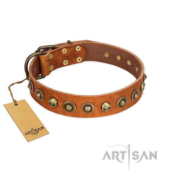 Full grain leather collar with awesome embellishments for your dog