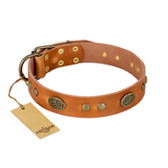 """Sun Beams"" FDT Artisan Tan Leather Rottweiler Collar with Decorations"